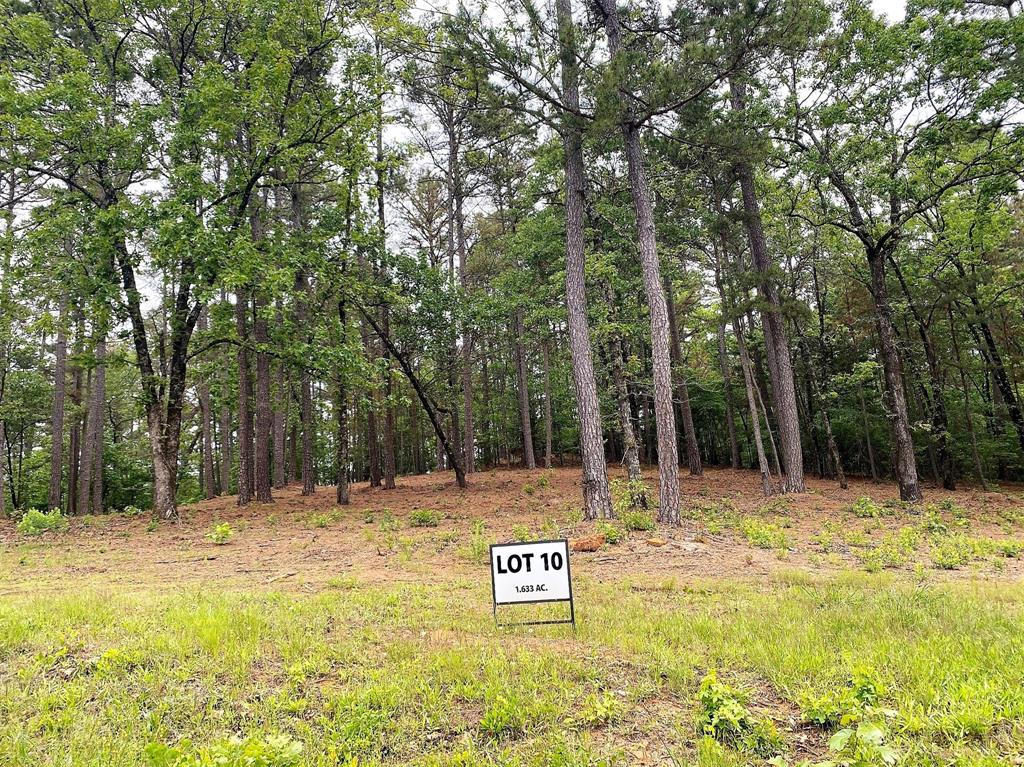 Lot 10 County Road 436  Lindale, Texas 75771 - Acquisto Real Estate best plano realtor mike Shepherd home owners association expert