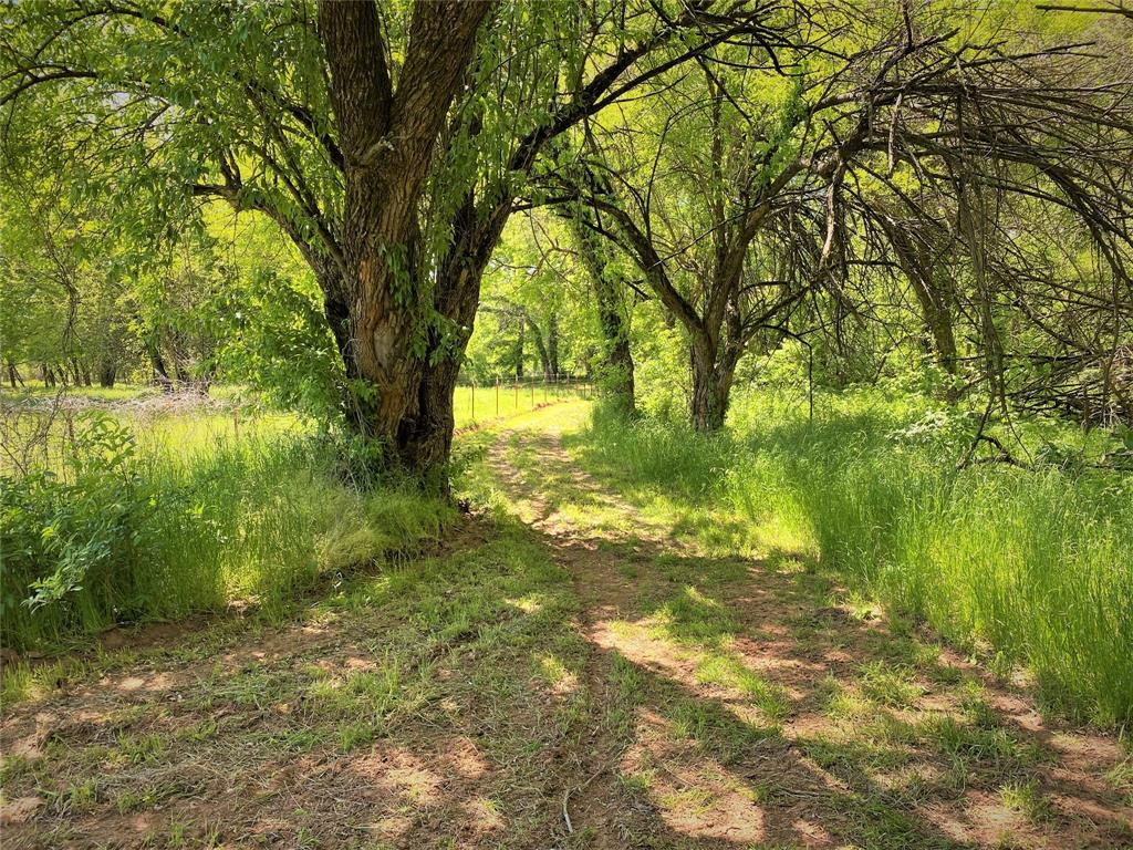 9891 Farm Road 906  Paris, Texas 75473 - acquisto real estate best plano real estate agent mike shepherd
