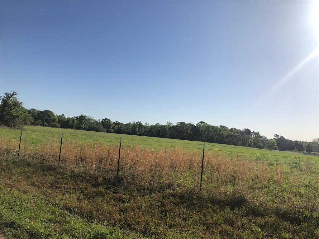 7037 County Road 3700  Athens, Texas 75752 - acquisto real estate best allen realtor kim miller hunters creek expert