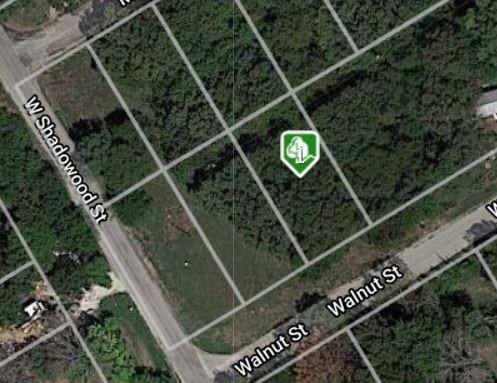 2812 Walnut  Street, Granbury, Texas 76048 - Acquisto Real Estate best frisco realtor Amy Gasperini 1031 exchange expert