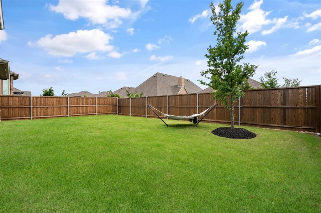 1425 Bird Cherry  Lane, Celina, Texas 75078 - acquisto real estate agent of the year mike shepherd