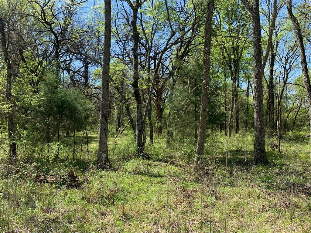 Lot 19 County Rd 4106  Greenville, Texas 75401 - Acquisto Real Estate best frisco realtor Amy Gasperini 1031 exchange expert