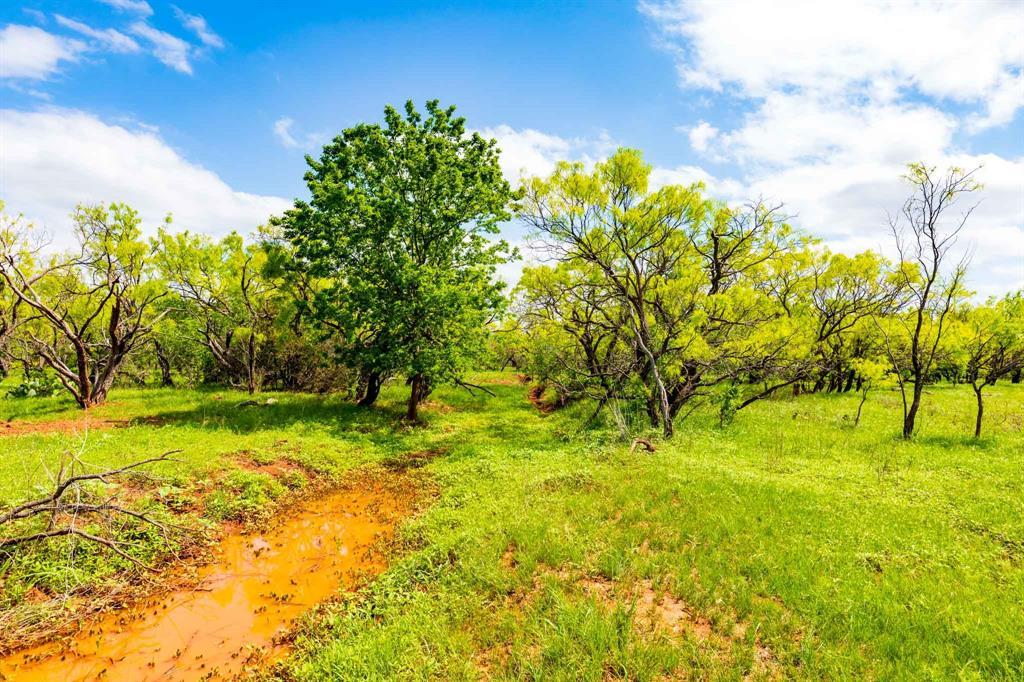 TBD 9 FM 604  Lawn, Texas 79530 - Acquisto Real Estate best frisco realtor Amy Gasperini 1031 exchange expert