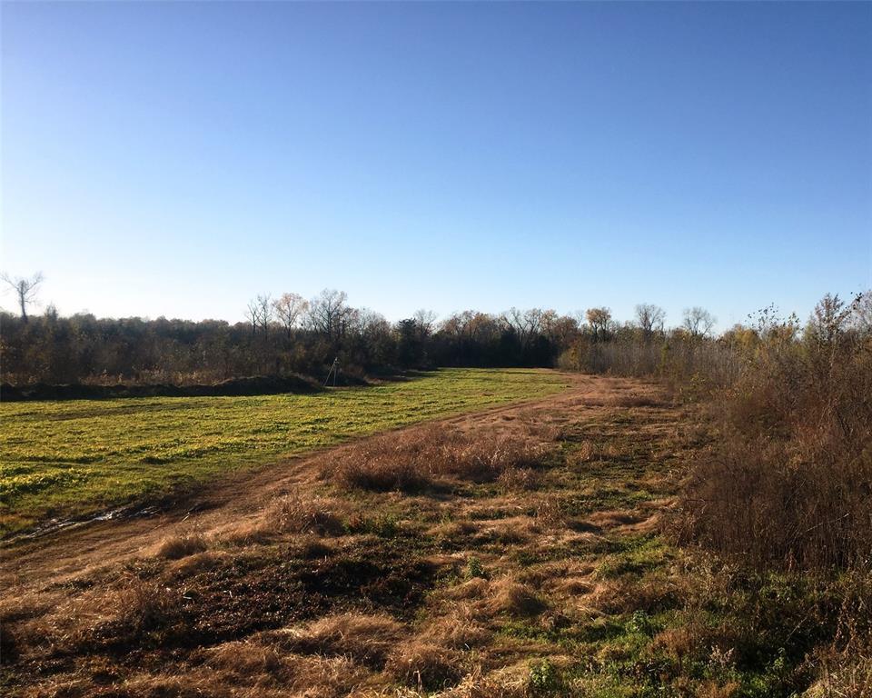 9891 Farm Road 906  Paris, Texas 75473 - acquisto real estate best realtor dallas texas linda miller agent for cultural buyers