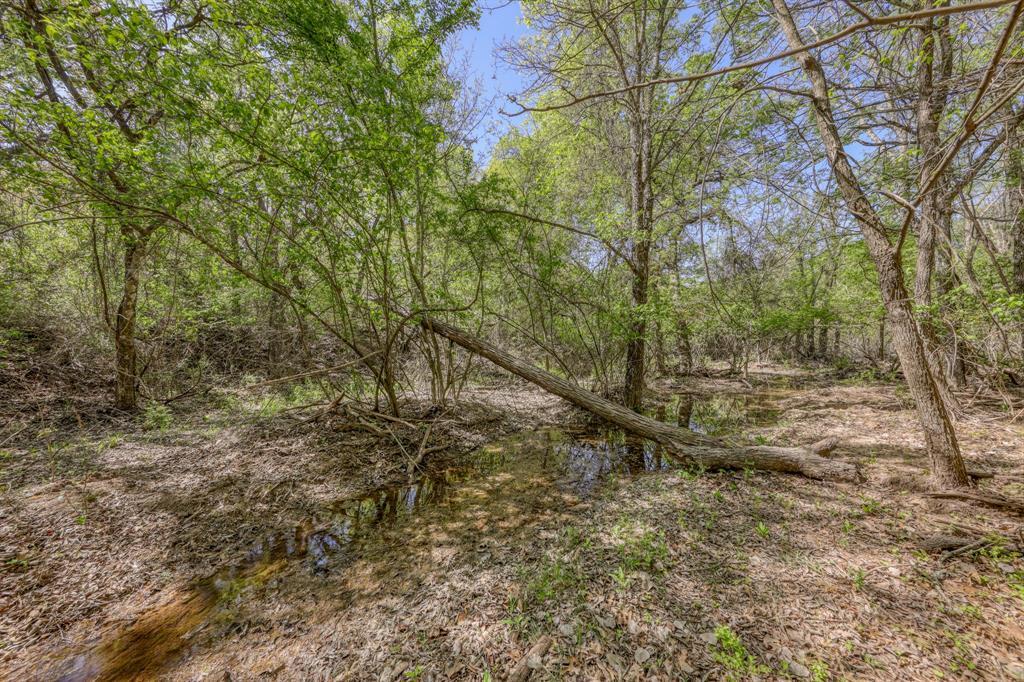 TBD 61 Bosal  Lane, Weatherford, Texas 76088 - acquisto real estate best allen realtor kim miller hunters creek expert