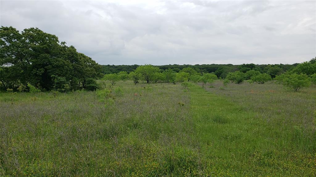 Lot 20 Ketchum  Court, Argyle, Texas 76226 - acquisto real estate best prosper realtor susan cancemi windfarms realtor