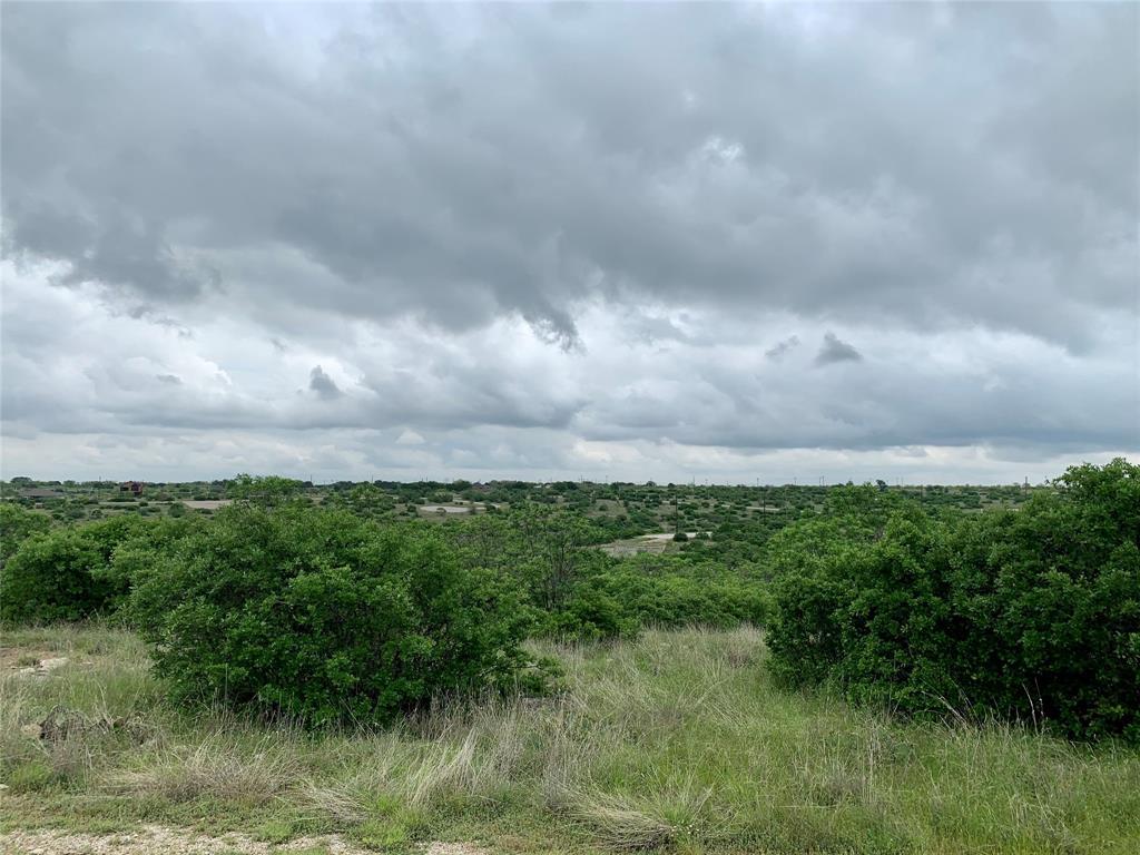 Baltrusol  Drive, Graford, Texas 76449 - Acquisto Real Estate best mckinney realtor hannah ewing stonebridge ranch expert