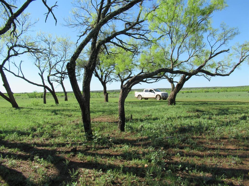 County Road 424  Rochelle, Texas 76872 - Acquisto Real Estate best frisco realtor Amy Gasperini 1031 exchange expert