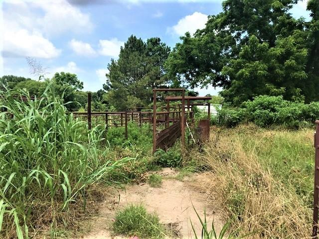 741 VZ County Road 1222 S  Grand Saline, Texas 75140 - acquisto real estate best listing photos hannah ewing mckinney real estate expert