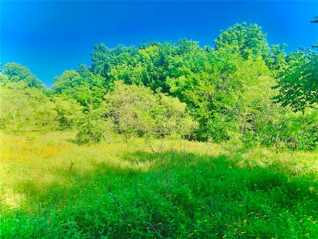 471 Stacks  Bristol, Texas 75119 - Acquisto Real Estate best frisco realtor Amy Gasperini 1031 exchange expert