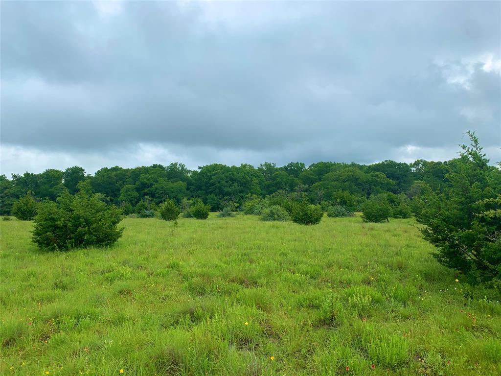 6 CR 101  Burnet, Texas 78611 - Acquisto Real Estate best plano realtor mike Shepherd home owners association expert