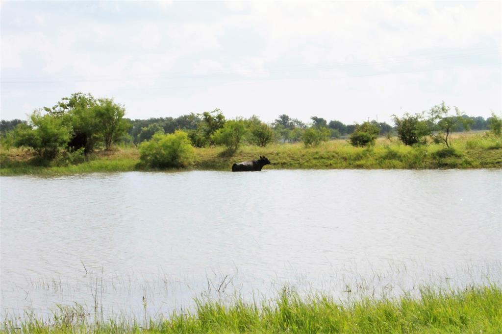 TBD CR 358  Richland Springs, Texas 76871 - Acquisto Real Estate best frisco realtor Amy Gasperini 1031 exchange expert
