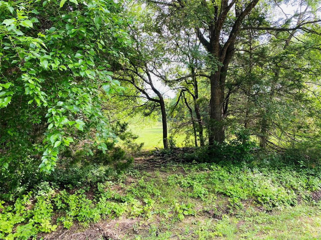 TBD Ovilla Oaks  Drive, Ovilla, Texas 75154 - acquisto real estate best allen realtor kim miller hunters creek expert
