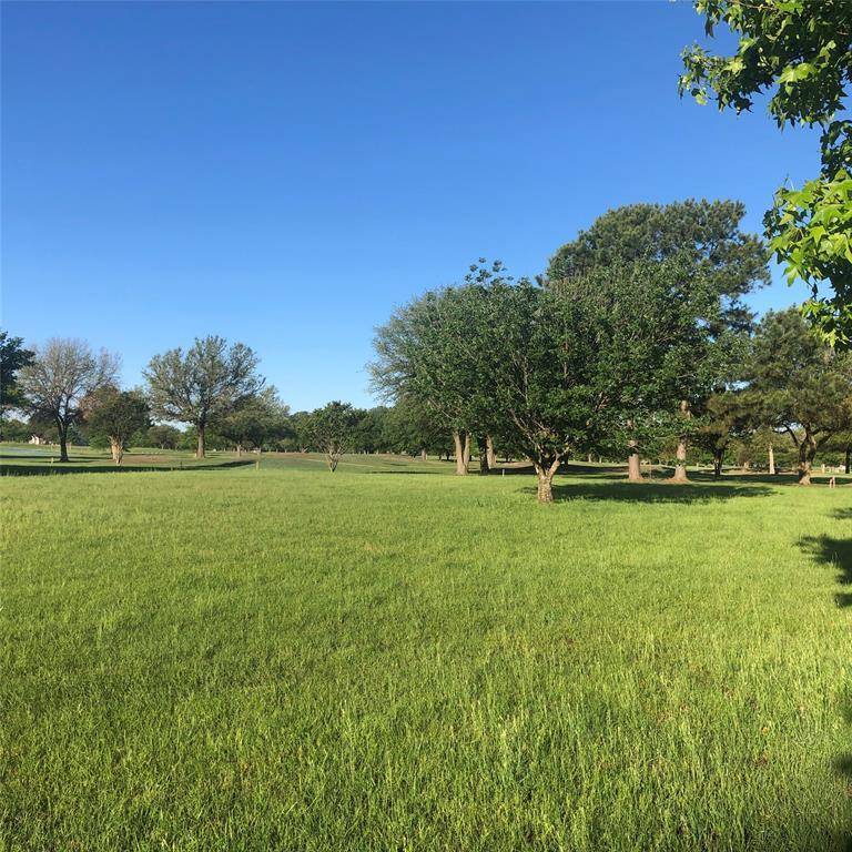 Lot 52 PR 5937  Emory, Texas 75440 - acquisto real estate best prosper realtor susan cancemi windfarms realtor