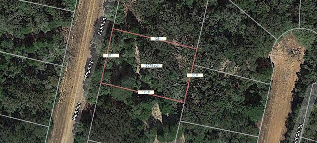 Lot 7 Plum Lane  Hilltop Lakes, Texas 77871 - Acquisto Real Estate best frisco realtor Amy Gasperini 1031 exchange expert