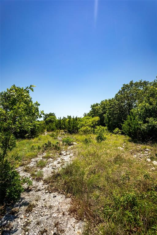 TBD County Road 2546  Meridian, Texas 76665 - acquisto real estate best prosper realtor susan cancemi windfarms realtor