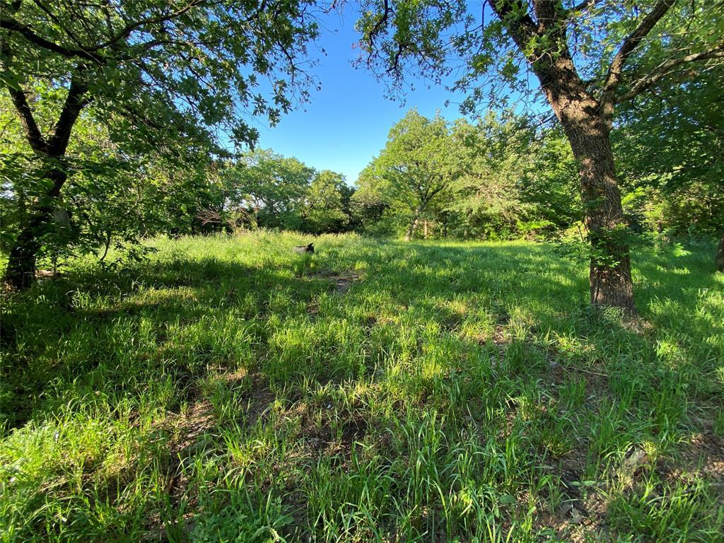 713 Briaroaks  Road, Burleson, Texas 76028 - acquisto real estate best allen realtor kim miller hunters creek expert