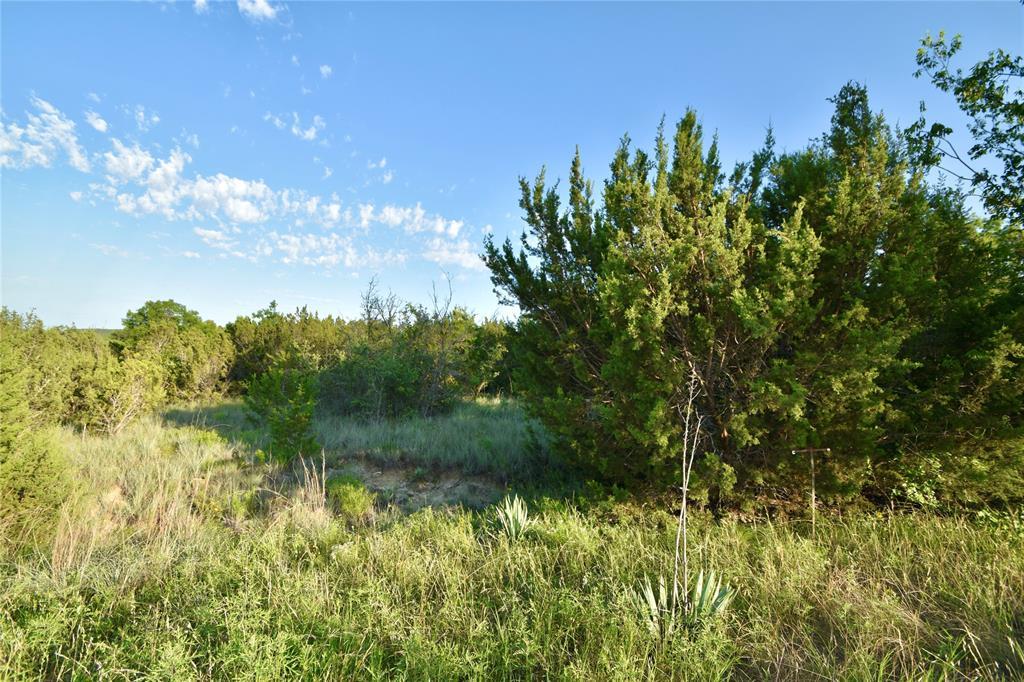 1400 Peninsula  Drive, Bluff Dale, Texas 76433 - Acquisto Real Estate best frisco realtor Amy Gasperini 1031 exchange expert