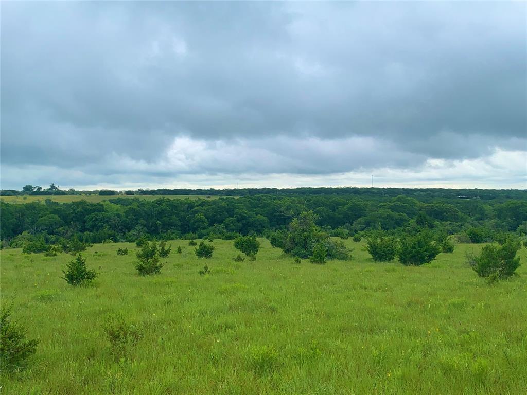 1 Co Rd 103  Burnet, Texas 78611 - Acquisto Real Estate best frisco realtor Amy Gasperini 1031 exchange expert