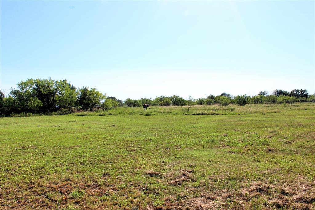 151 Allen  Lane, Jacksboro, Texas 76458 - acquisto real estate best realtor foreclosure real estate mike shepeherd walnut grove realtor