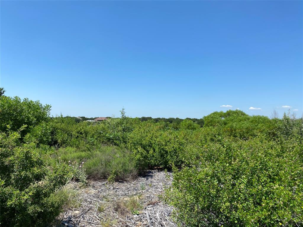 Lot645R Canyon Wren  Loop, Possum Kingdom Lake, Texas 76449 - Acquisto Real Estate best frisco realtor Amy Gasperini 1031 exchange expert