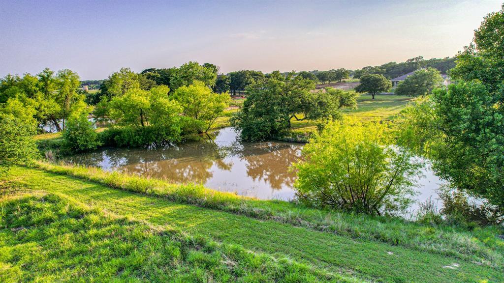107 Chappel Hill  Court, Weatherford, Texas 76088 - acquisto real estate best negotiating realtor linda miller declutter realtor