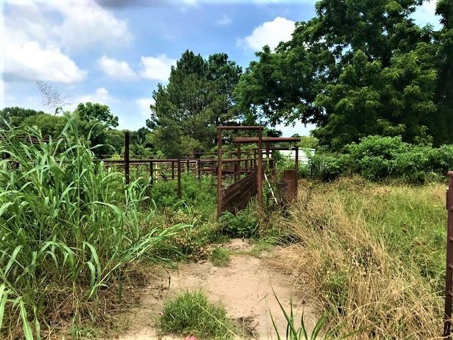 741 VZ County Road 1222 S  Grand Saline, Texas 75140 - acquisto real estate best park cities realtor kim miller best staging agent