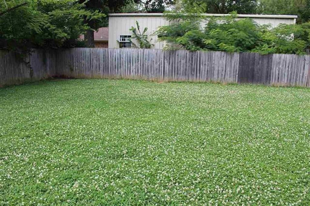 3095 Mahaffey  Lane, Paris, Texas 75460 - acquisto real estate best listing agent in the nation shana acquisto estate realtor