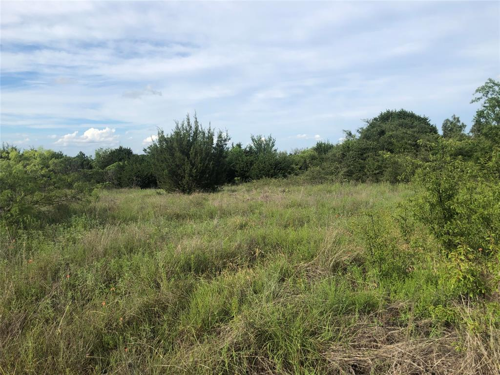 2610 Tolar  Highway, Tolar, Texas 76476 - acquisto real estate best listing listing agent in texas shana acquisto rich person realtor