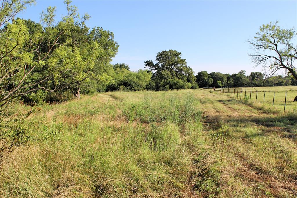 151 Allen  Lane, Jacksboro, Texas 76458 - acquisto real estate best frisco real estate agent amy gasperini panther creek realtor