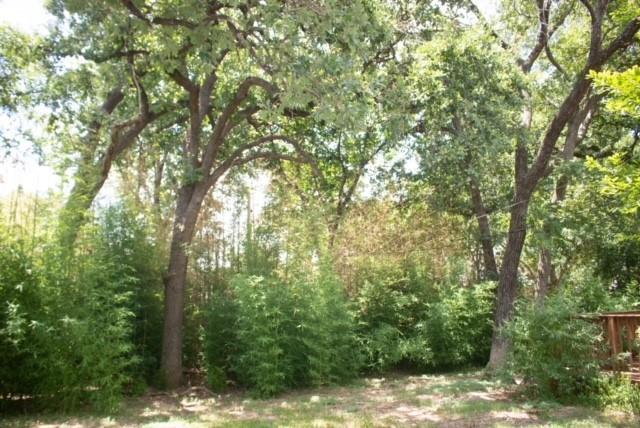3422 Malibu  Court, Arlington, Texas 76017 - acquisto real estate agent of the year mike shepherd