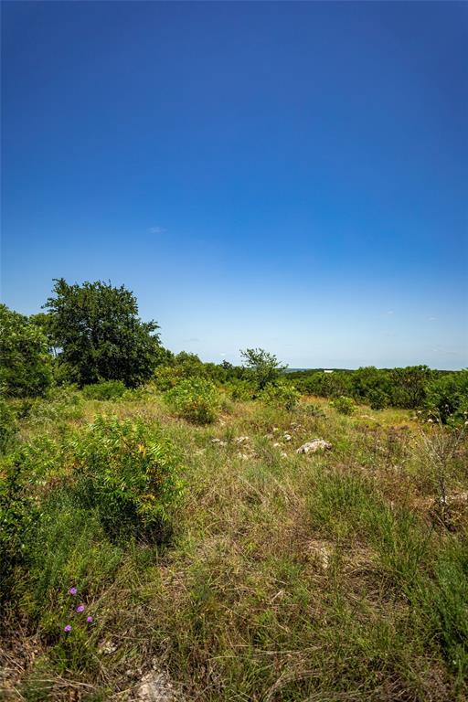TBD County Road 2546  Meridian, Texas 76665 - acquisto real estate best the colony realtor linda miller the bridges real estate