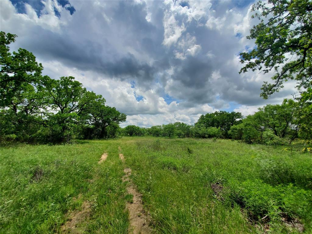 6153 Farm To Market Road 502  Rochelle, Texas 76871 - acquisto real estate best designer and realtor hannah ewing kind realtor