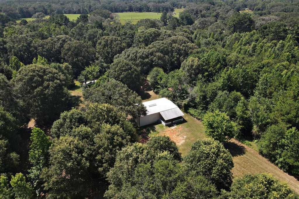 10982 County Road 3406  Brownsboro, Texas 75756 - Acquisto Real Estate best frisco realtor Amy Gasperini 1031 exchange expert