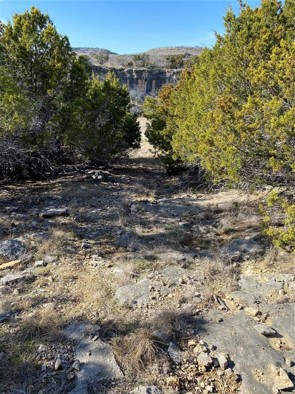2040 Bluff Creek  Drive, Strawn, Texas 76475 - Acquisto Real Estate best mckinney realtor hannah ewing stonebridge ranch expert