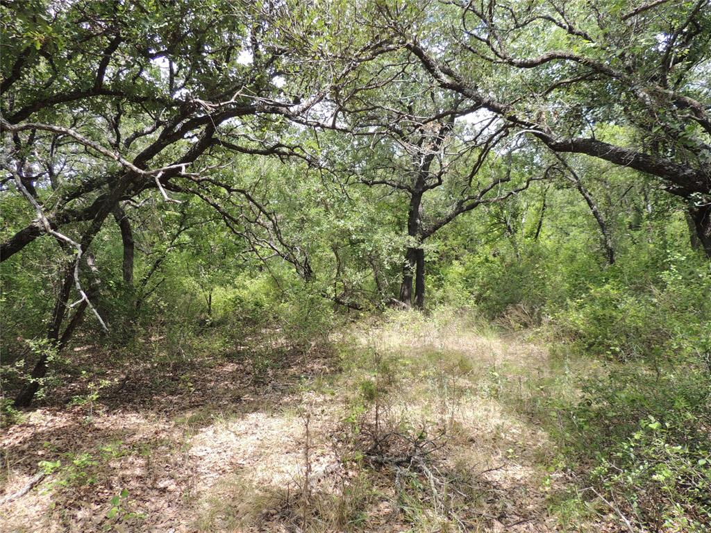 County Road 109  Huckabay, Texas 76463 - Acquisto Real Estate best frisco realtor Amy Gasperini 1031 exchange expert
