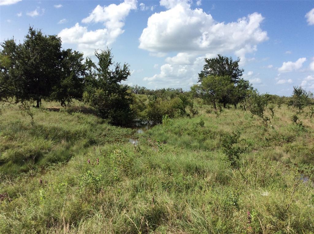 2875 CR 505  Hamilton, Texas 76531 - acquisto real estate best luxury buyers agent in texas shana acquisto inheritance realtor