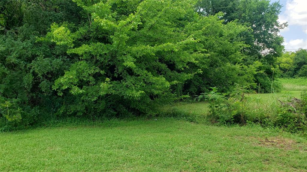 TBD Deep Hill  Circle, Gun Barrel City, Texas 75156 - acquisto real estate best listing listing agent in texas shana acquisto rich person realtor
