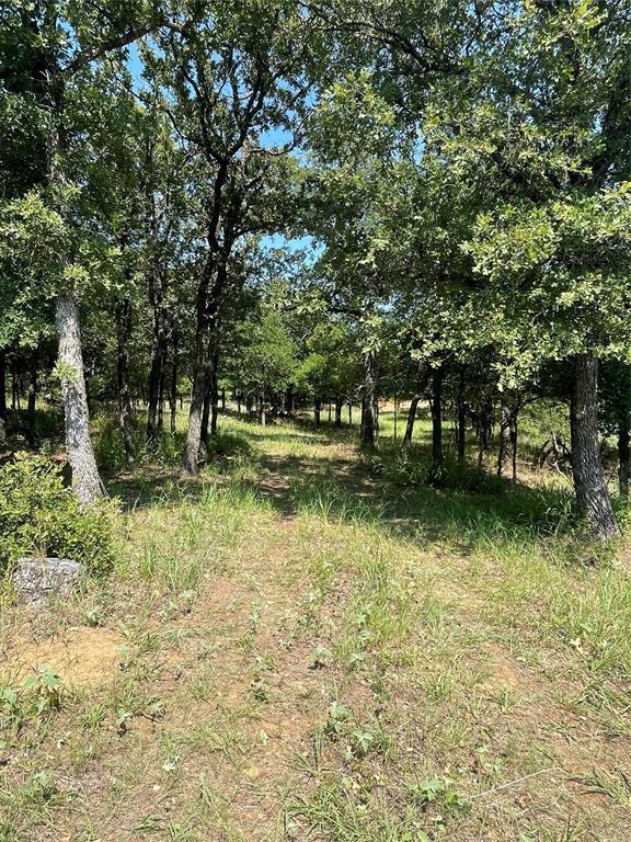LOT167 Post Oak Cove  Sunset, Texas 76270 - Acquisto Real Estate best frisco realtor Amy Gasperini 1031 exchange expert