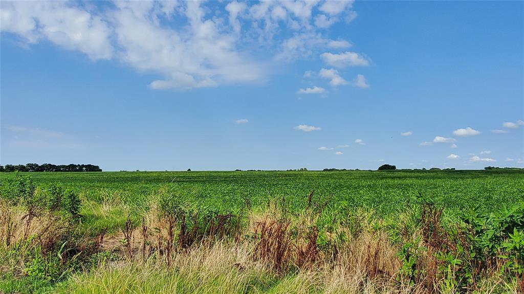TBD47.4 CR  3430  Pecan Gap, Texas 75469 - Acquisto Real Estate best frisco realtor Amy Gasperini 1031 exchange expert
