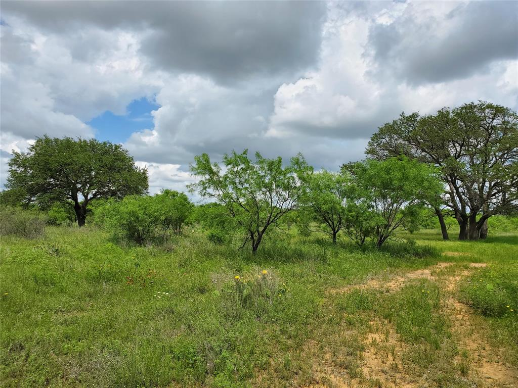 6153 Farm To Market Road 502  Rochelle, Texas 76871 - acquisto real estate agent of the year mike shepherd