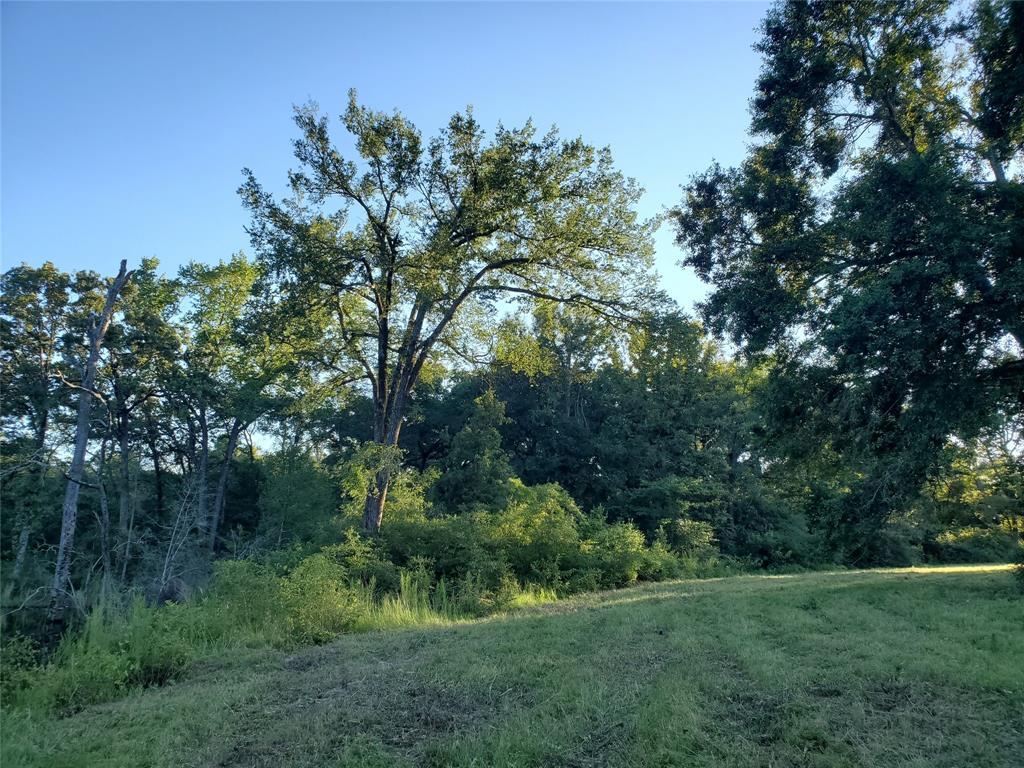 9716 County Road 332  Buffalo, Texas 75831 - Acquisto Real Estate best frisco realtor Amy Gasperini 1031 exchange expert