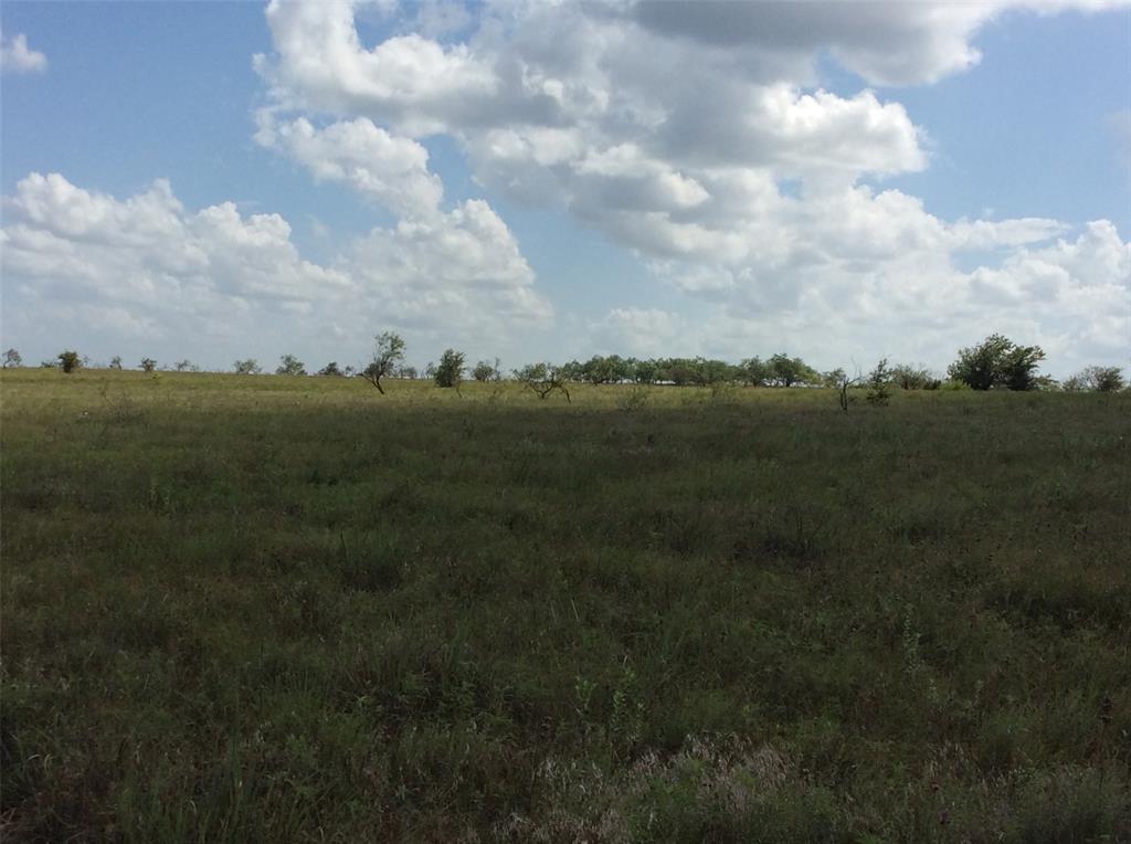 2875 CR 505  Hamilton, Texas 76531 - acquisto real estate best realtor foreclosure real estate mike shepeherd walnut grove realtor