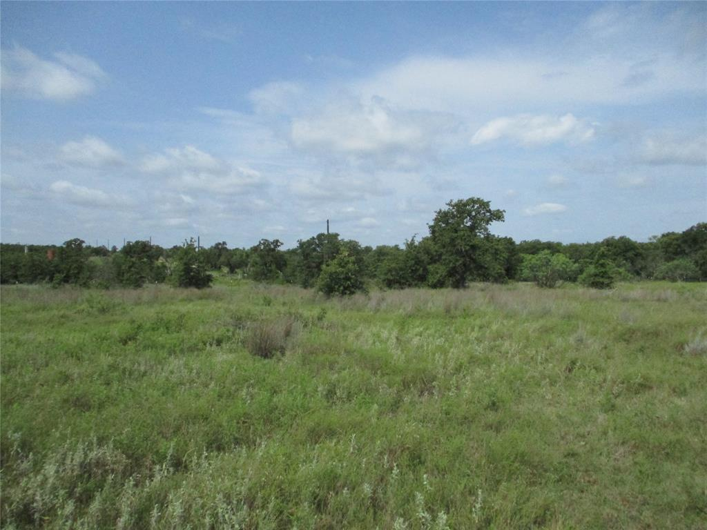 10 AC Birdwell  Bryson, Texas 76427 - Acquisto Real Estate best plano realtor mike Shepherd home owners association expert