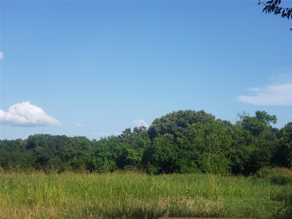 TBD Farm Road 71  Dike, Texas 75437 - Acquisto Real Estate best frisco realtor Amy Gasperini 1031 exchange expert