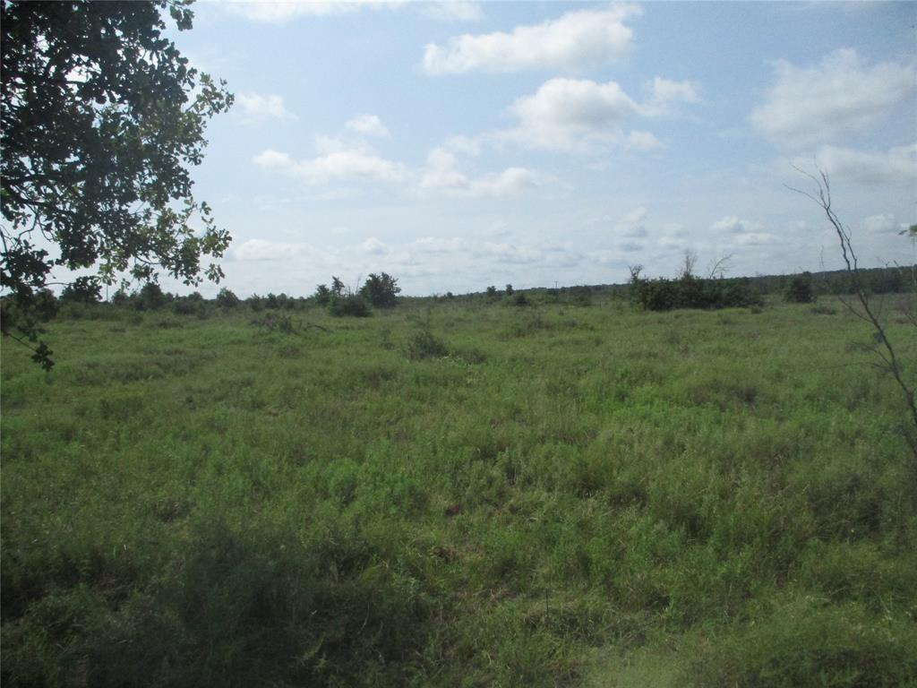 10 AC Birdwell  Bryson, Texas 76427 - Acquisto Real Estate best mckinney realtor hannah ewing stonebridge ranch expert