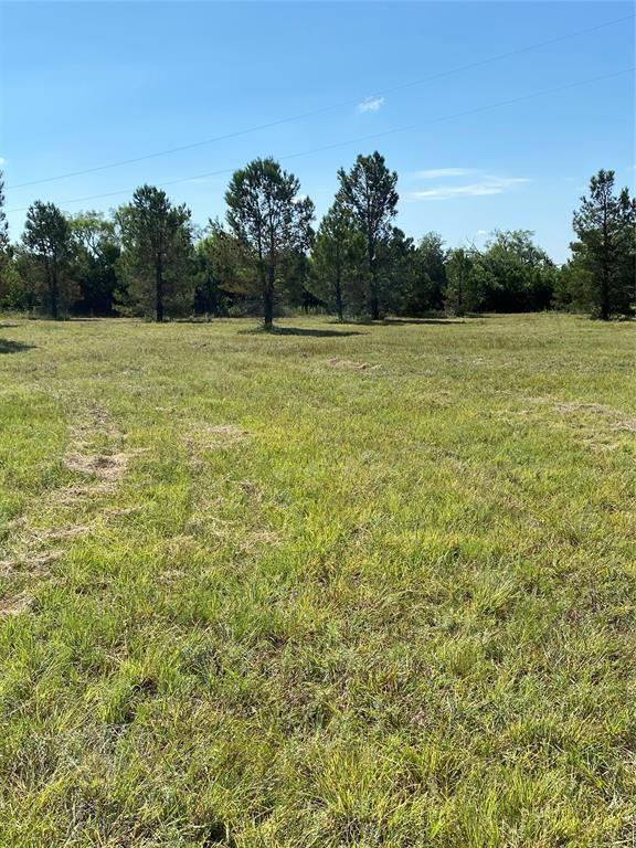 3453 County Road 476  May, Texas 76857 - acquisto real estate best prosper realtor susan cancemi windfarms realtor