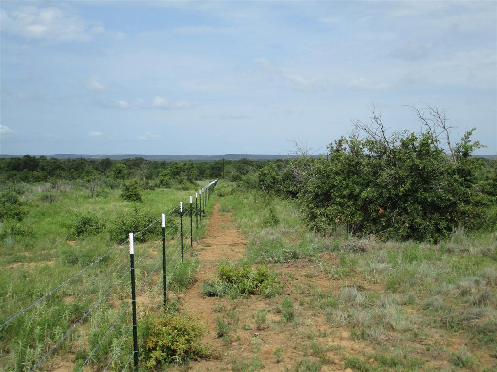 10 AC Birdwell  Bryson, Texas 76427 - acquisto real estate best prosper realtor susan cancemi windfarms realtor