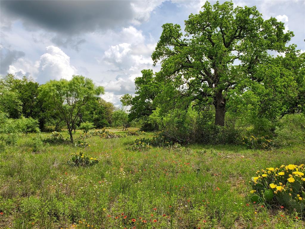 6153 Farm To Market Road 502  Rochelle, Texas 76871 - acquisto real estate best realtor dfw jody daley liberty high school realtor