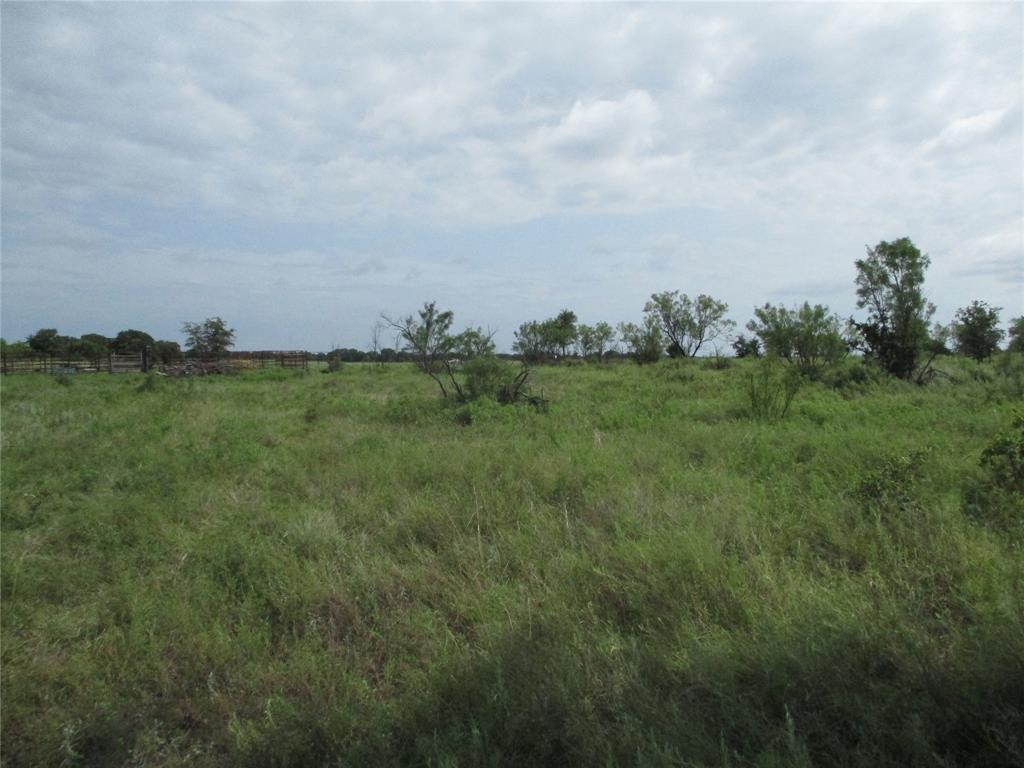 10 AC Birdwell  Bryson, Texas 76427 - acquisto real estate best allen realtor kim miller hunters creek expert